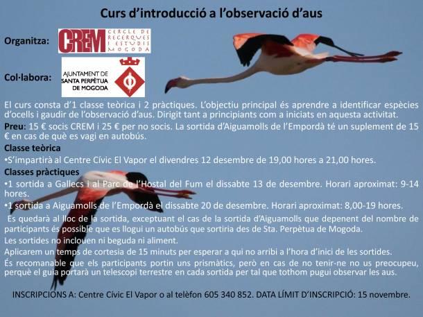 PublicitatCursAus2014